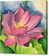 Lotus Flower In Water Color Framed Print By Pushpa Sharma
