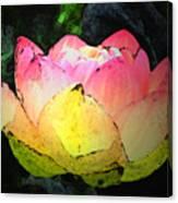 Lotus Fresco Canvas Print