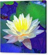 Lotus Grace Canvas Print