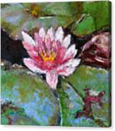Lotus Of The Pond Canvas Print