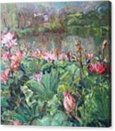 Lotus Pond-3 Canvas Print