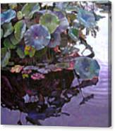 Lotus Reflections Canvas Print
