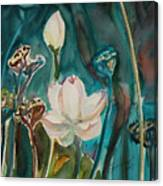 Lotus Study I Canvas Print