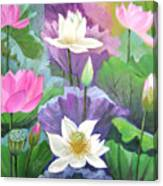 Lotus Trio Canvas Print