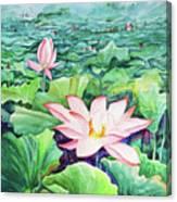 Lotus_01 Canvas Print