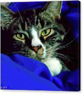 Louis And The Snuggy Canvas Print