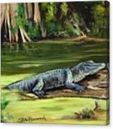 Louisiana Gator Canvas Print