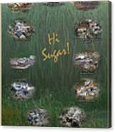Louisiana Sugar Cane Poster 2008-2009 Canvas Print
