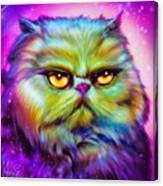 Loulou, Persian Cat Canvas Print