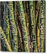 Love And Bamboo Canvas Print