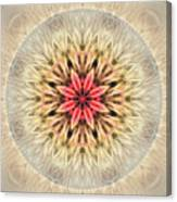 Love From Within Mandala Canvas Print