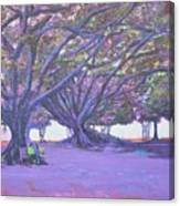 Love In Lal Bagh 4 Canvas Print