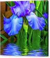 Love Is Blue 2 Canvas Print