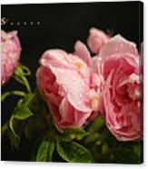 Love Is ........ Canvas Print