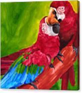 Love Macaws Canvas Print