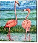 Love Talk Canvas Print