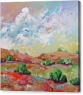 Love This Land Canvas Print
