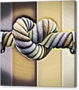 Love Wins/varney Canvas Print