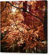 Lovely Autumn Tree Canvas Print
