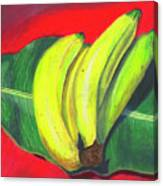 Lovely Bunch Of Bananas Canvas Print