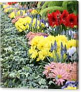 Lovely Flowers In Manito Park Conservatory Canvas Print