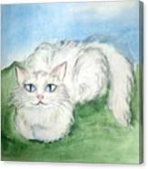Lovely Kitty. White Cat Kusyaka Canvas Print