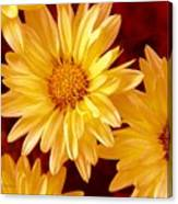 Lovely Mums Canvas Print