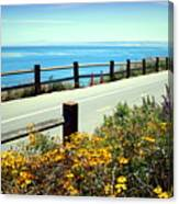 Lovers Point Walkway Canvas Print