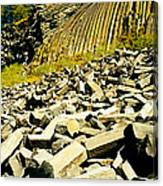 Low Angle View Of Devils Post Pile Canvas Print