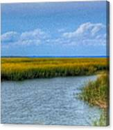Low Country Vista Canvas Print