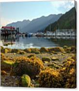 Low Tide At Horseshoe Bay Canada Canvas Print