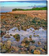 Low Tide At Montauk Point Canvas Print