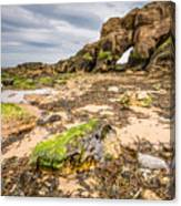 Low Tide At Saddle Rocks Canvas Print