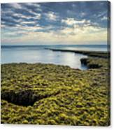 Low Tide At Swami's Canvas Print