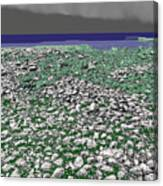 Low Tide Color 3 Canvas Print