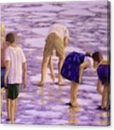 Low Tide Exploration Canvas Print