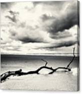 Low Tide, Lindisfarne Canvas Print