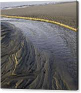 Low Tide Morning Canvas Print