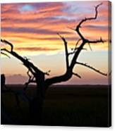Lowcountry Sunset Canvas Print