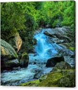 Lower Lynn Camp Falls Smoky Mountains Canvas Print