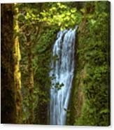 Lower Multanomah Falls, Oregon Canvas Print