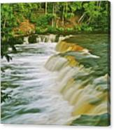 Lower Tahquamenon 6200 Canvas Print