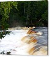 Lower Tahquamenon Falls Canvas Print