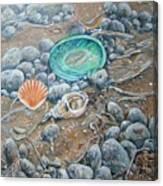 Lowtide Treasures Canvas Print