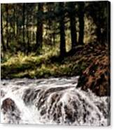 Lucia Falls In July Canvas Print
