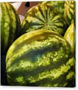 Lucious Watermelon Canvas Print