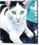 Lucky Elvis - Cat Portrait Canvas Print