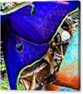 Luna Moth False Color Work One Canvas Print