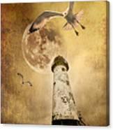 Lunar Flight Canvas Print