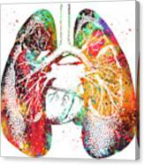 Lungs And Heart Canvas Print